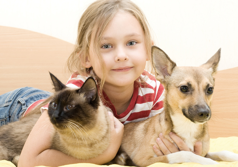 little girl with a cat and a dog